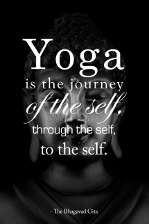 Yoga is the Journey of the Self, through the Self, to the Self. -The Bhagavad Gita